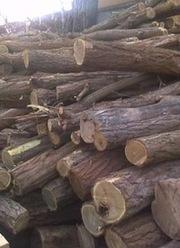 Lemne de foc.Продам дрова,  По доступной цене!